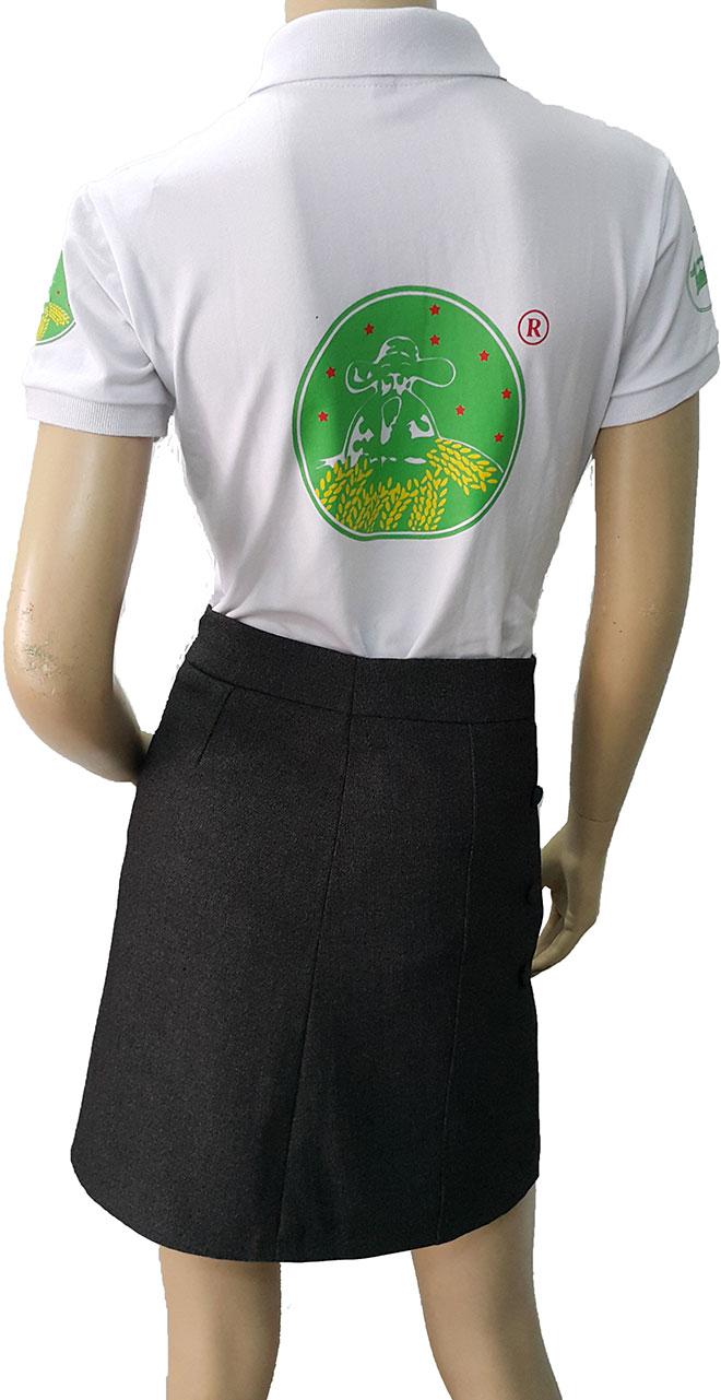 Hình in phía sau lưng của áo thun đồng phục công ty Name Hae Chemical.