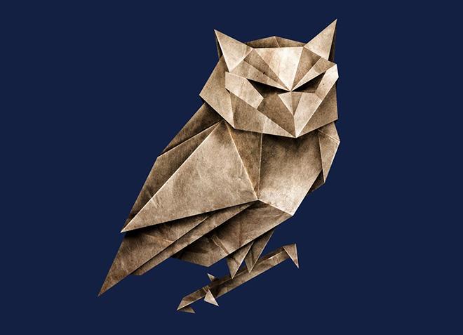 10 mẫu thiết kế áo thun đẹp nhất của Threadless - Owligami - Hình 1
