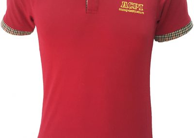 Áo thun đồng phục công sở của trường Việt Mỹ Edu - hình 1